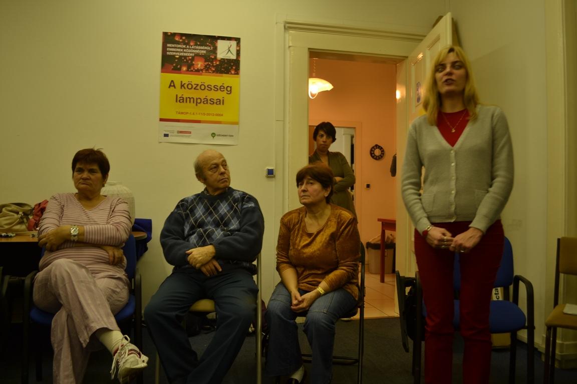 svoe-lampas-2013-2