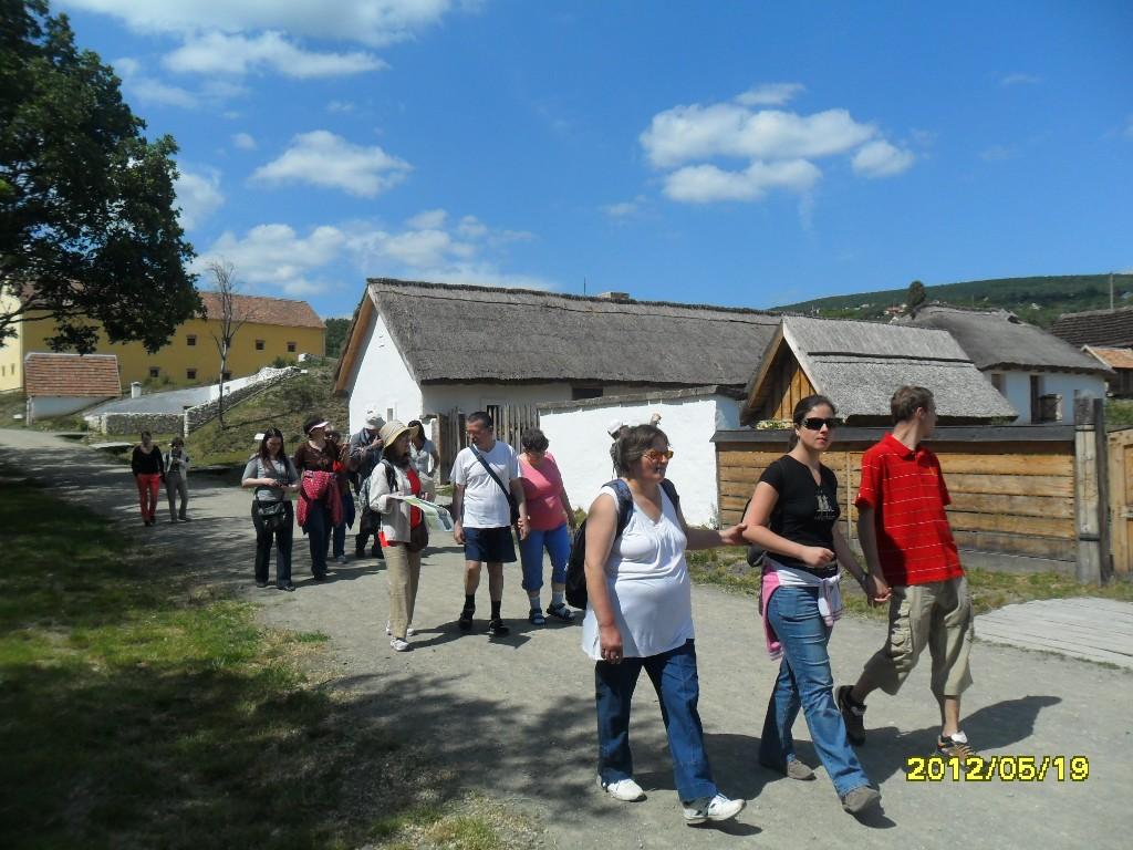 svoe-skanzen-2012-10