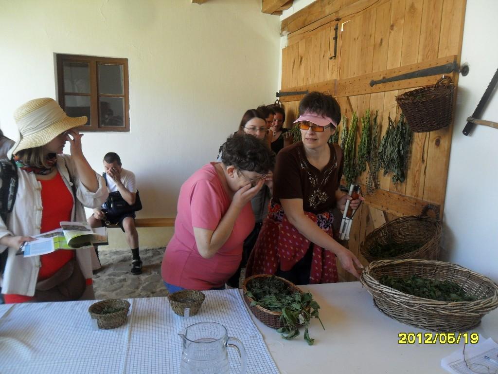svoe-skanzen-2012-9